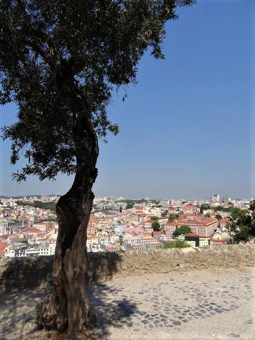 Castelo Lissabon 7