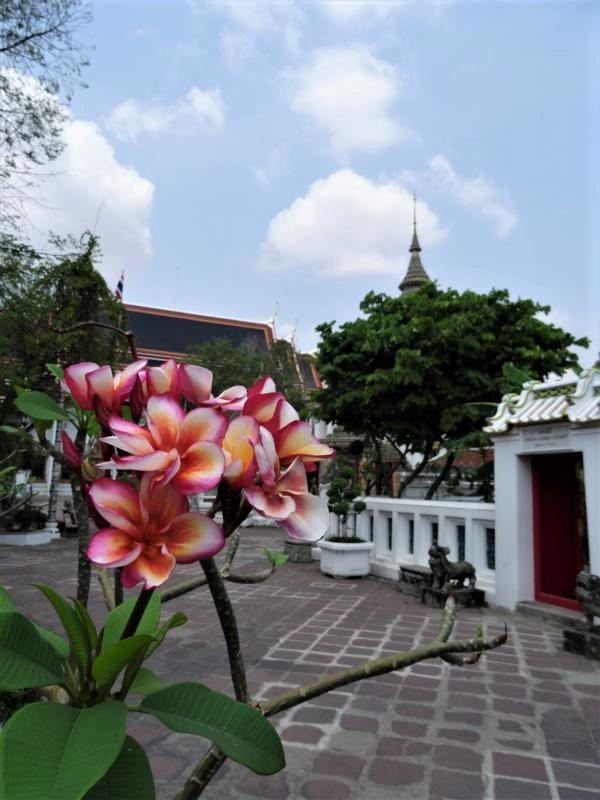 K800_Wat Pho (12)