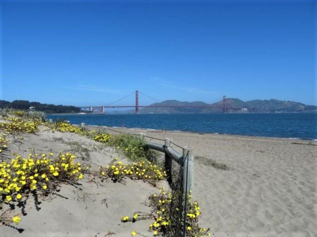 K800_San Francisco_5
