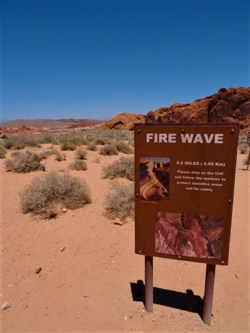 K1024_Valley of Fire_23